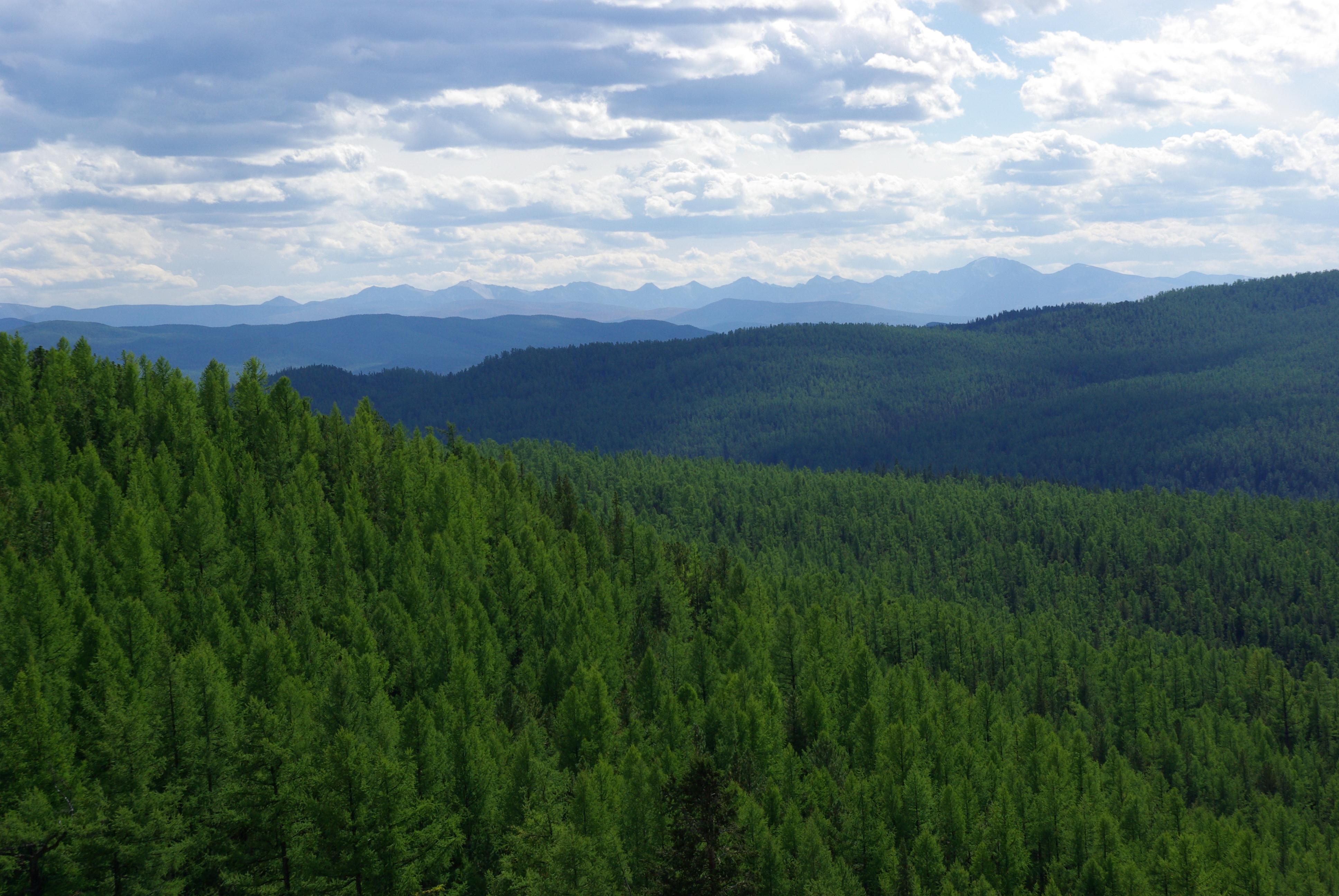 История путешествия на Алтай